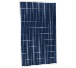 Jinko-solar-eagle-72